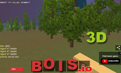 Bois io - 3D Battle Royale io game